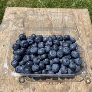 Blueberry Premium 500grs