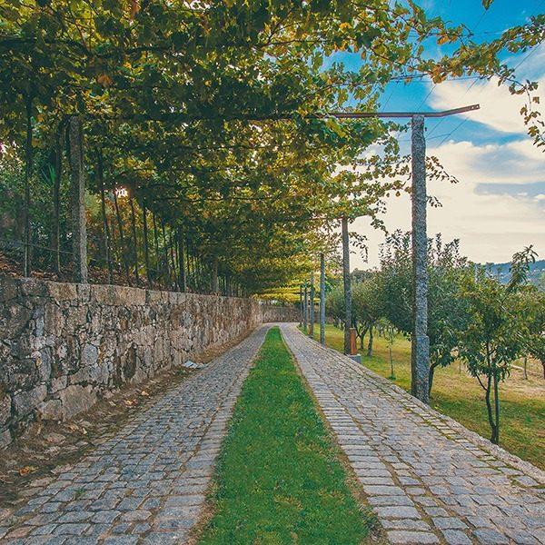 caminho de entrada